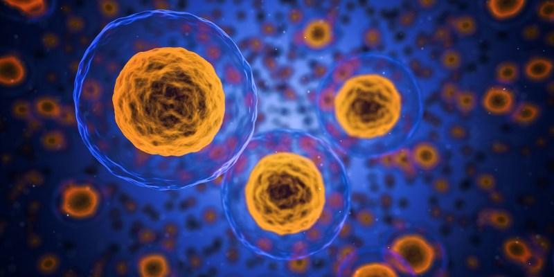 Fármaco inteligente acaba con células de metástasis